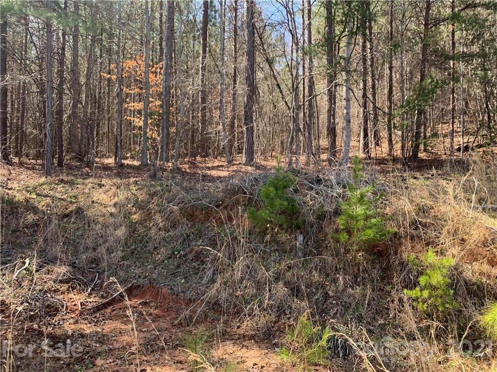 Photo of 999 Holbert Cove Road #1, Mill Spring, NC 28756 (MLS # 3727716)