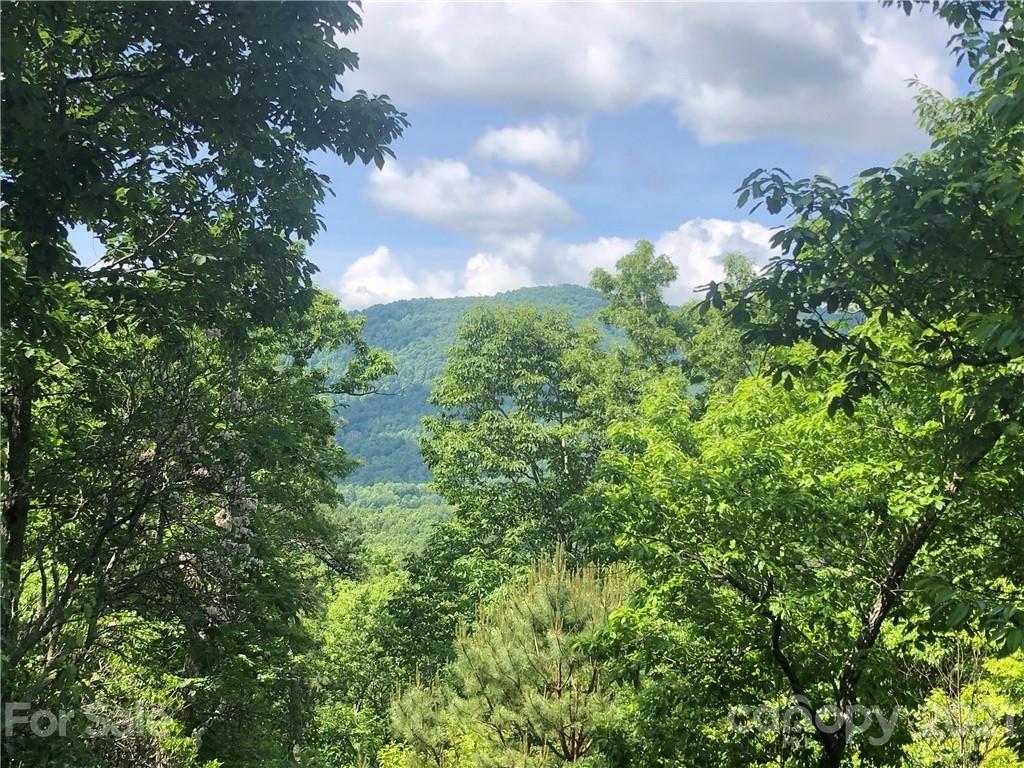 Photo of 68 Smokey Ridge Trail #197, Arden, NC 28704 (MLS # 3737716)
