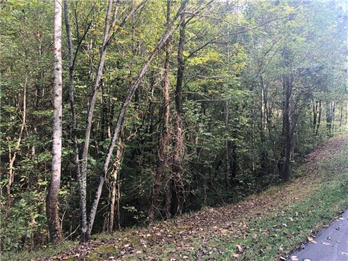 Photo of Lot 1 Brittany Drive, Lenoir, NC 28645 (MLS # 3560717)