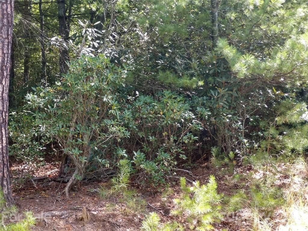 Photo of 00 James View Road #23, Marion, NC 28752 (MLS # 3790722)