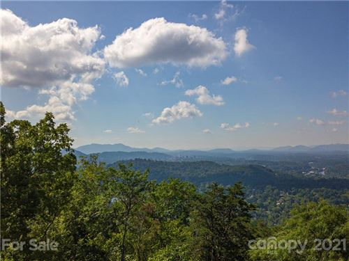 Photo of 66 Lake Town Lane #259 & 260, Asheville, NC 28804 (MLS # 3784723)