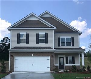 Photo of 124 Bristleback Court, Mount Holly, NC 28120 (MLS # 3479726)