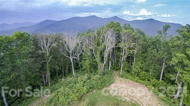 Photo of 1300 Elk Mountain Scenic Highway, Asheville, NC 28804 (MLS # 3735729)