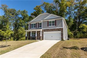 Photo of 204 Rippling Water Drive, Mount Holly, NC 28120 (MLS # 3546730)
