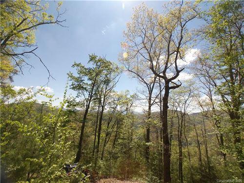 Photo of Lot 118 Bear River Lodge Trail #118, Marshall, NC 28753 (MLS # 3620738)