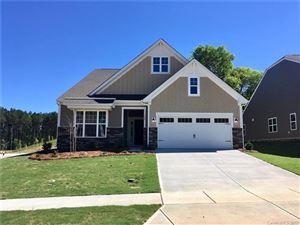 Photo of 344 Picasso Trail #173, Mount Holly, NC 28120 (MLS # 3441743)