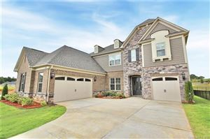 Photo of 11103 Egrets Point Drive, Charlotte, NC 28278 (MLS # 3542746)