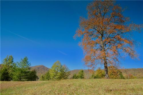 Photo of 4 Rain Lily Trail, Arden, NC 28704 (MLS # 3487763)