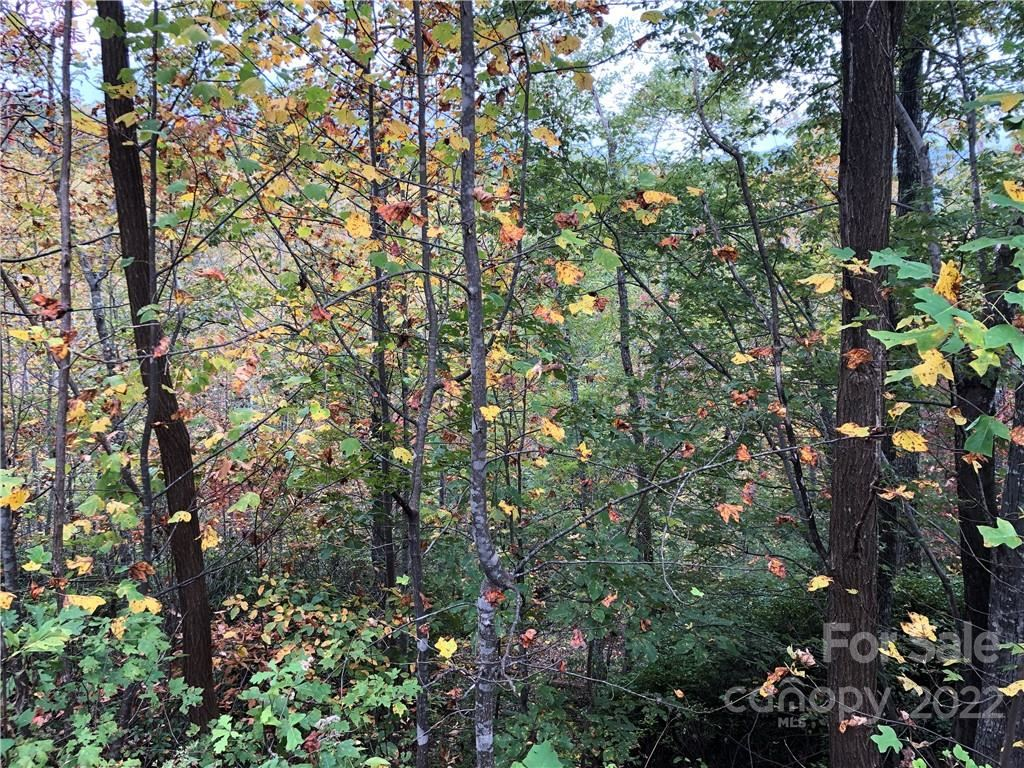 Photo of 0 Touch Me Not Trail #21, Lake Lure, NC 28746 (MLS # 3569770)