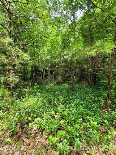 Photo of 228 Landers Chapel Road, Lincolnton, NC 28092 (MLS # 3766771)