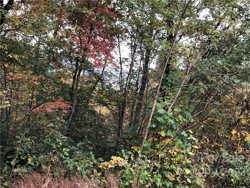 Photo of 0 Touch Me Not Trail #20, Lake Lure, NC 28746 (MLS # 3569771)