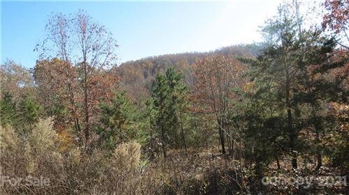 Photo of 14-IV Double Eagle Drive, Nebo, NC 28746 (MLS # 3569772)