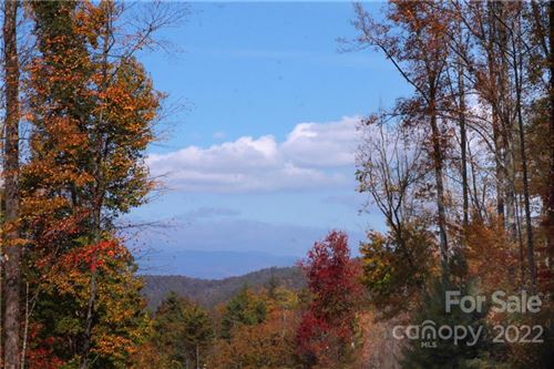 Photo of Lot 81 Peppervine Circle, Brevard, NC 28712 (MLS # 3228786)