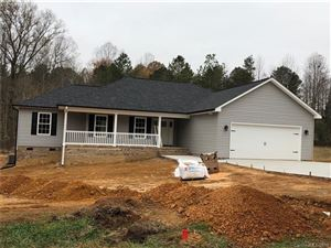 Photo of 301 Delview Drive, Cherryville, NC 28021 (MLS # 3569789)