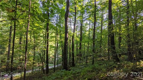 Photo of 99999 Sand Branch Road, Black Mountain, NC 28711 (MLS # 3689791)