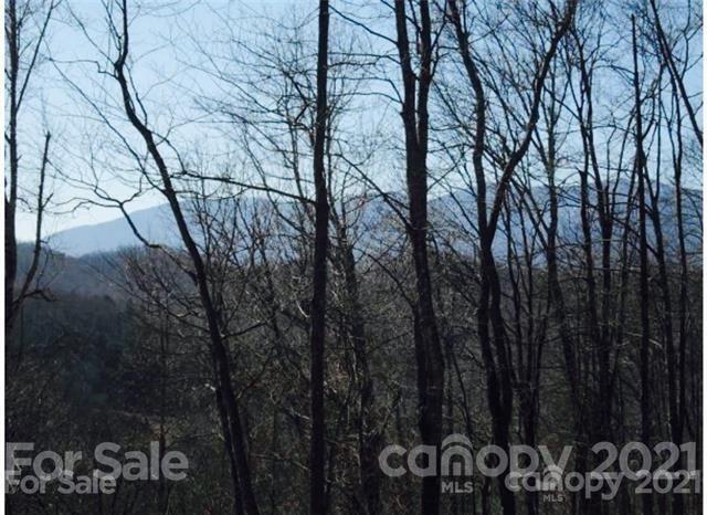 Photo of 36 damselfly Court #36, Spruce Pine, NC 28777 (MLS # 3779811)