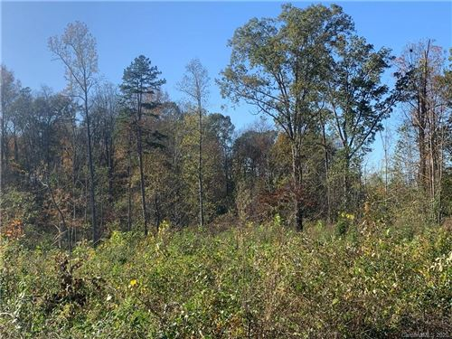 Photo of 135 Con Lee Drive, Olin, NC 28660 (MLS # 3678812)