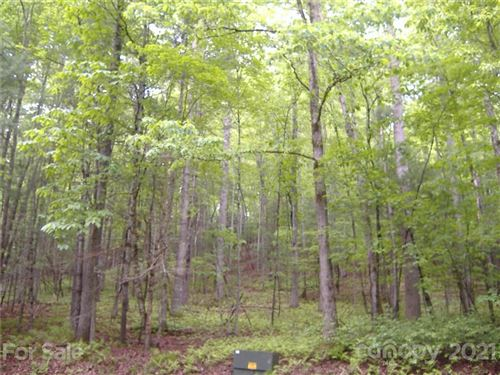 Photo of 000 Dudisdi Road, Brevard, NC 28712 (MLS # 3466813)