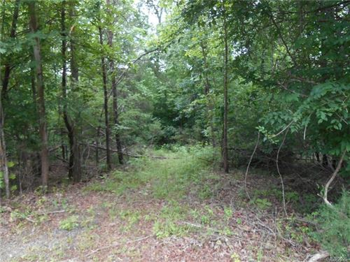 Photo of Lot 28 River Crest Parkway, Rutherfordton, NC 28139 (MLS # 3632821)