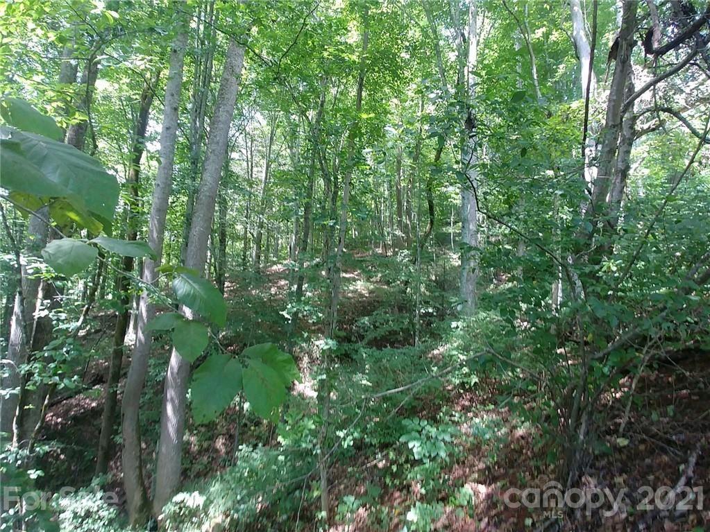 Photo of 00 Peterson Lane, Spruce Pine, NC 28777 (MLS # 3777822)