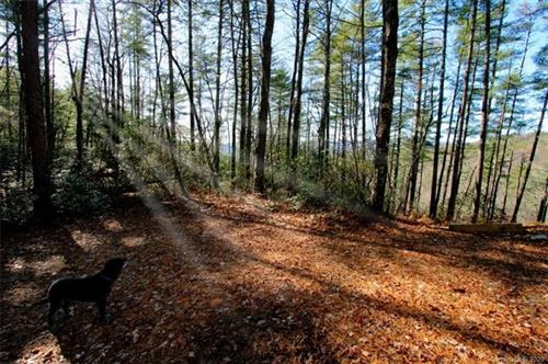 Photo of TBD Bear Pen Hollow Road #5, Rosman, NC 28712 (MLS # 3578828)