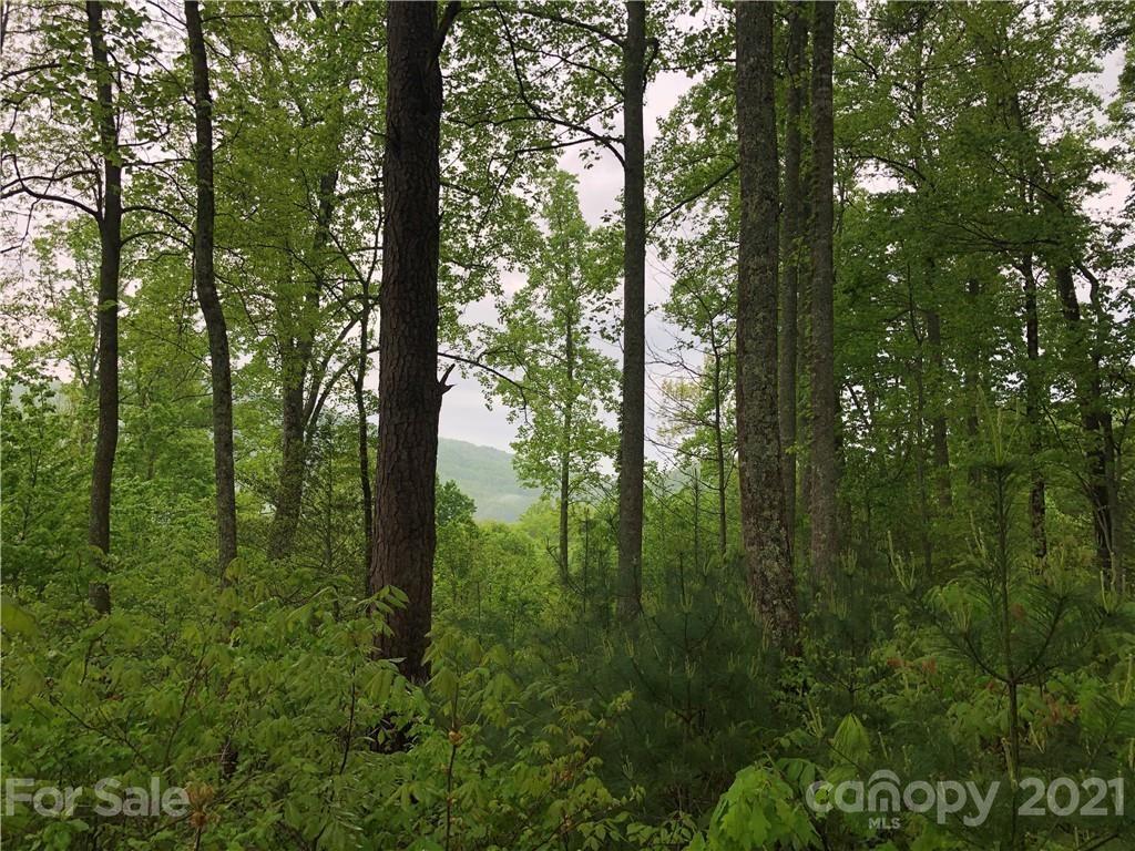 Photo of 688 Walnut Valley Parkway #32, Arden, NC 28704 (MLS # 3737836)