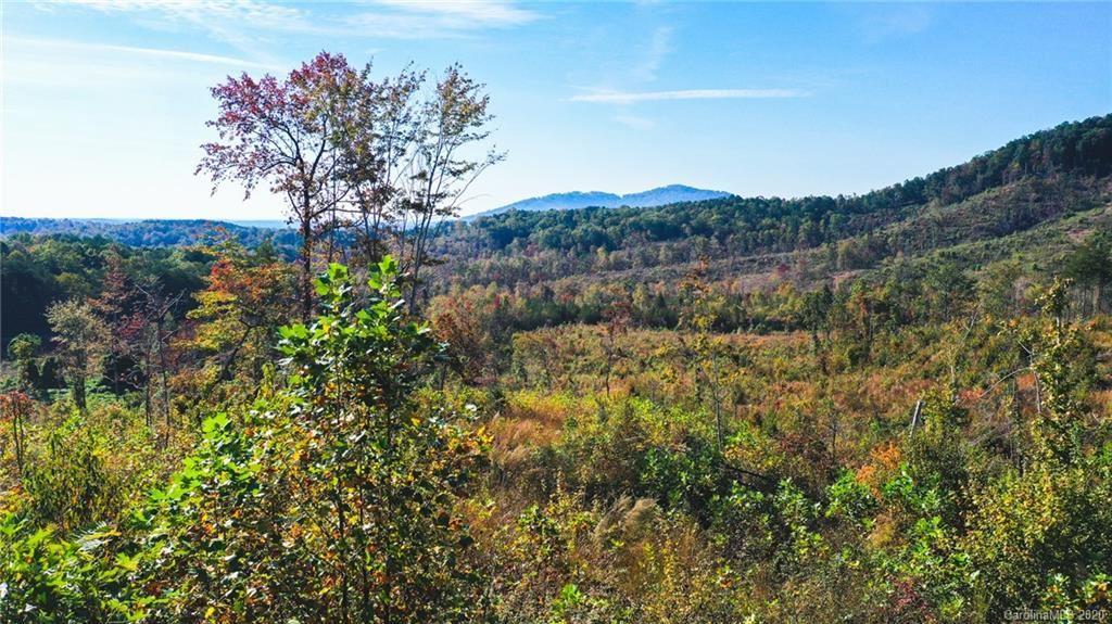 Photo of 0 Bills Creek Road #0, Lake Lure, NC 28746 (MLS # 3676839)