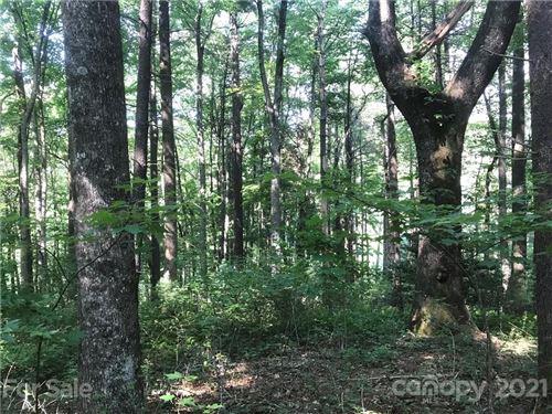 Photo of TBD Severly Lane #339, Brevard, NC 28712 (MLS # 3759849)