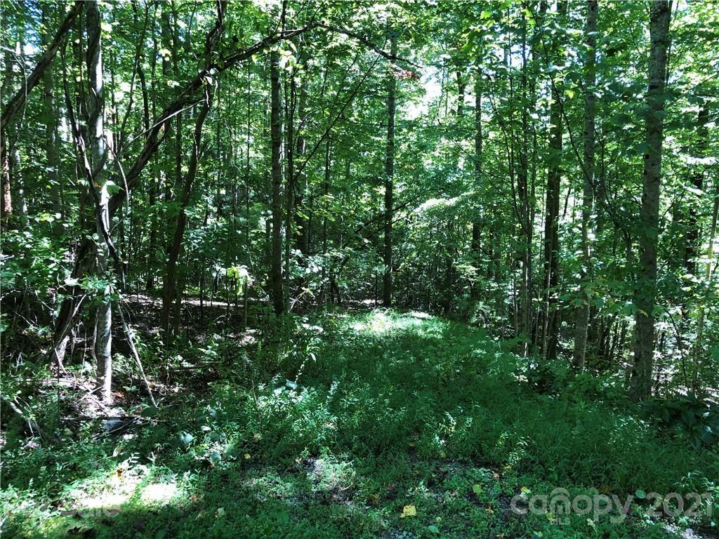 Photo of 300 Cedar Rock Trail #362, Hendersonville, NC 28739 (MLS # 3788857)