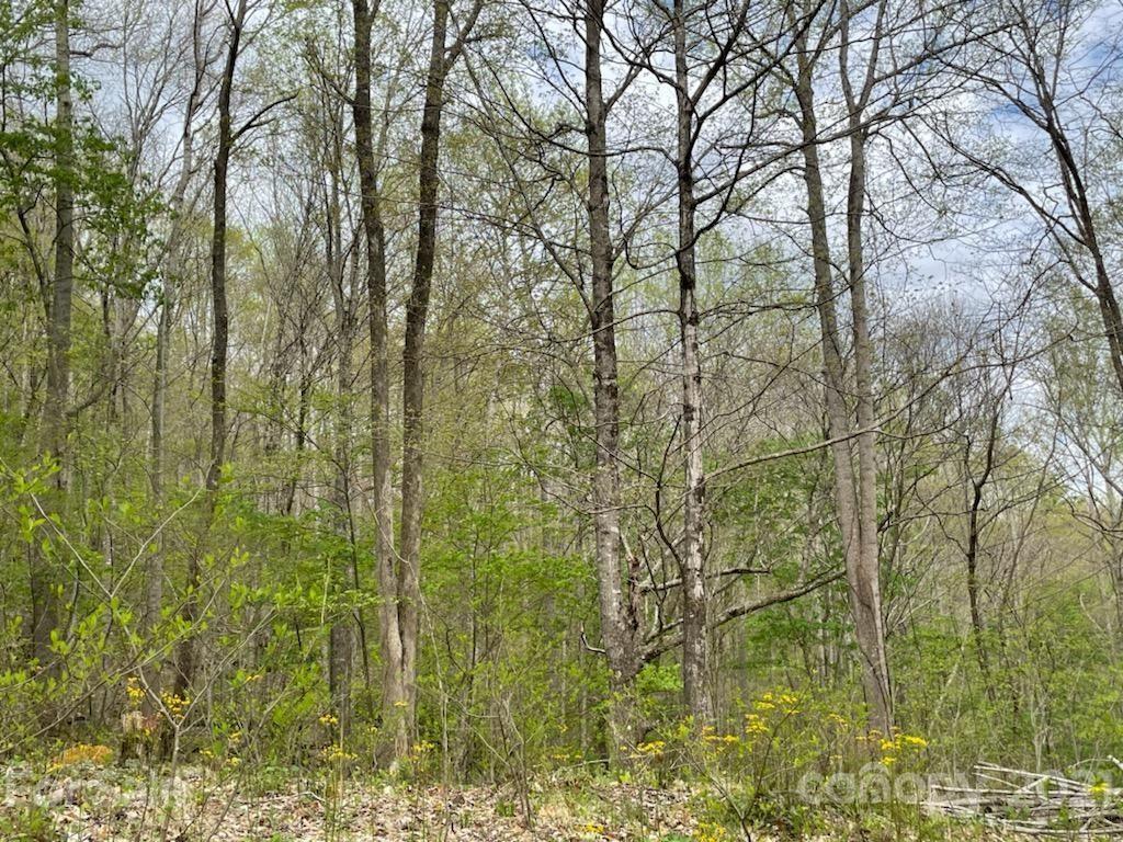 Photo of 0 Doras Lane, Bakersville, NC 28705 (MLS # 3734860)