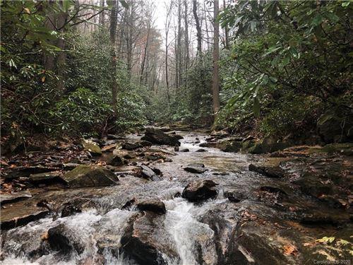 Photo of 99999 Low Gap Road, Hendersonville, NC 28792 (MLS # 3680870)