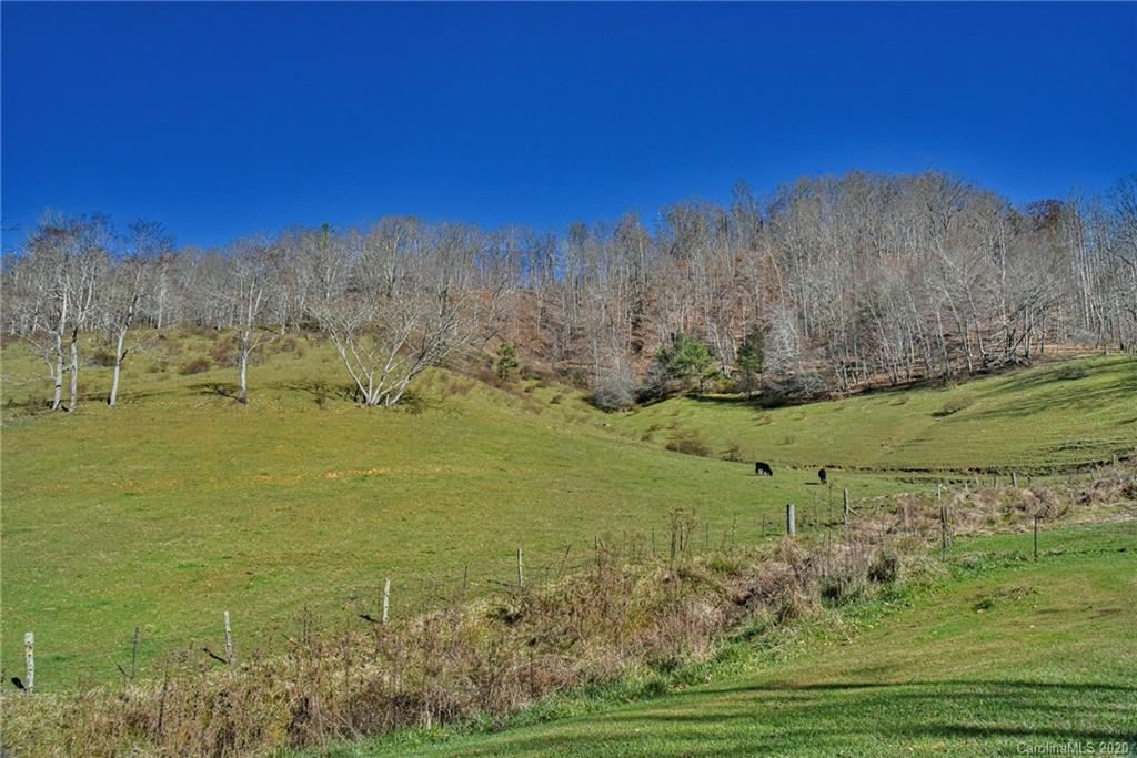 Photo of 1164 Ponder Creek Road, Mars Hill, NC 28754 (MLS # 3685874)