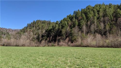 Photo of ### Hwy 208 Highway, Marshall, NC 28753 (MLS # 3684883)