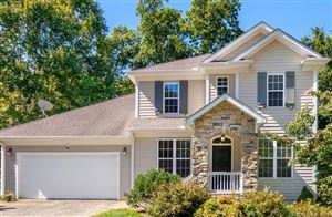 Photo of 430 Mountain Wasp Drive, Candler, NC 28715 (MLS # 3535892)