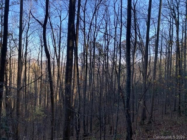 Photo of 00 McHone Road, Spruce Pine, NC 28777 (MLS # 3693902)
