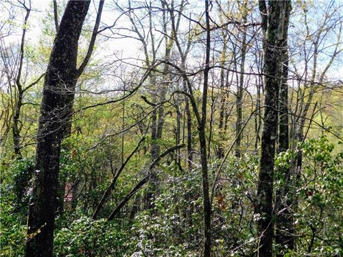 Photo of L25R Pisgah Forest Drive #25, Pisgah Forest, NC 28768 (MLS # 3383933)
