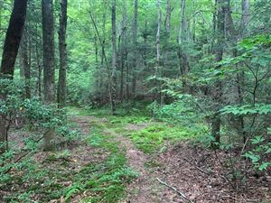 Photo of lot 14 Liz Reece Road, Rosman, NC 28772 (MLS # 3542934)