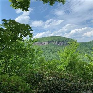 Photo of Lot 13 Meadow Ridge Drive, Lake Toxaway, NC 28747 (MLS # 3512936)