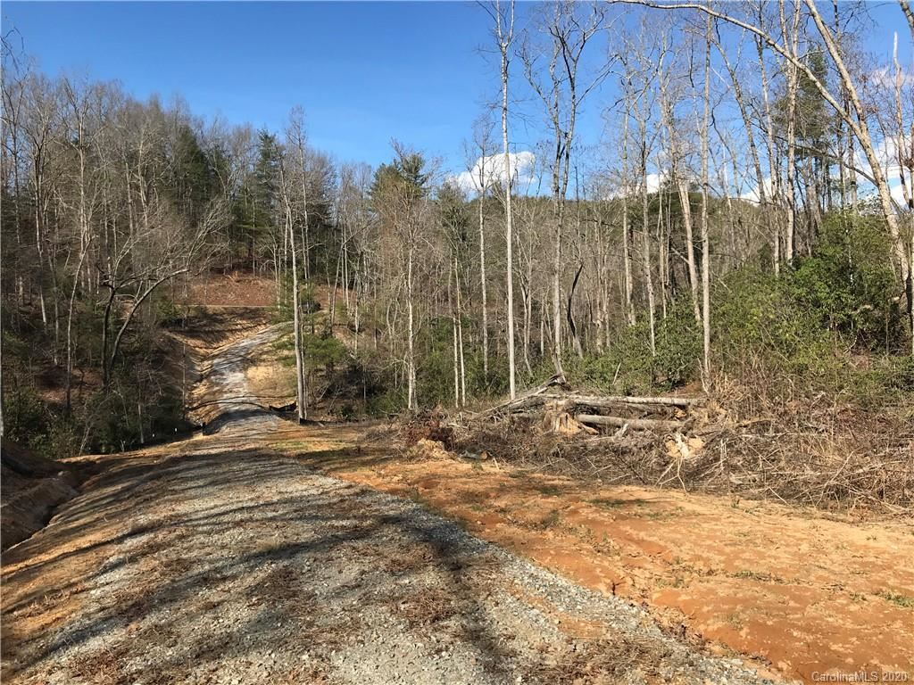 Photo of 99999 Camp Creek Road, Saluda, NC 28773 (MLS # 3608936)