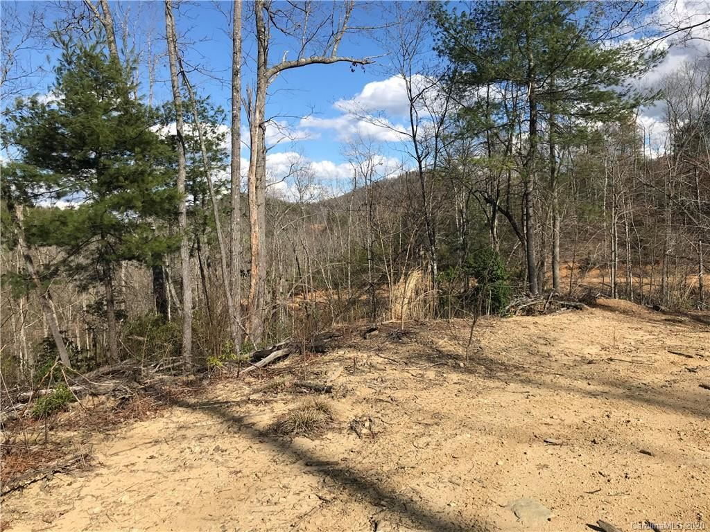 Photo of 99999 Camp Creek Road, Saluda, NC 28773 (MLS # 3608936)