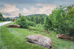 Photo of 8 Green Gorge Trail, Asheville, NC 28804 (MLS # 3418938)