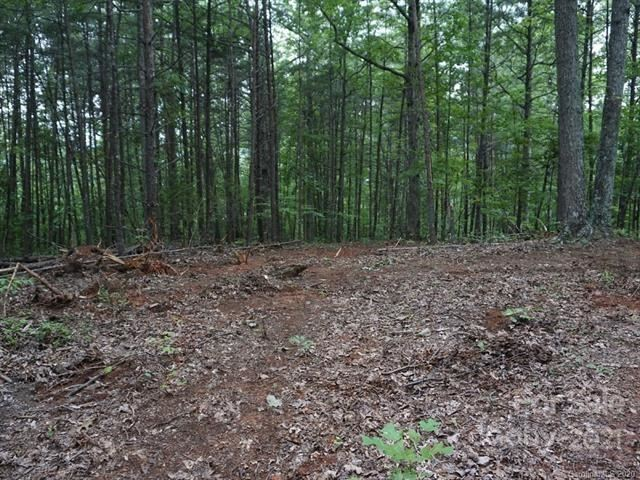 Photo of 5712 US 64/74A Highway, Lake Lure, NC 28746 (MLS # 3697945)