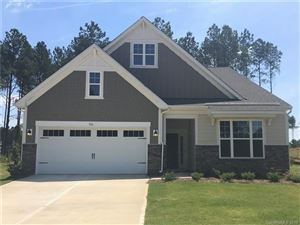 Photo of 316 Picasso Trail #180, Mount Holly, NC 28120 (MLS # 3444946)