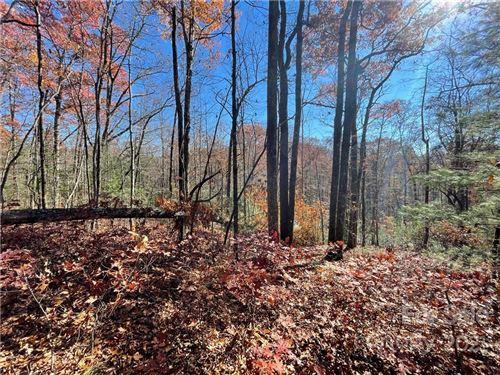 Photo of 116 Green Hollow Lane #116, Brevard, NC 28712 (MLS # 3469951)