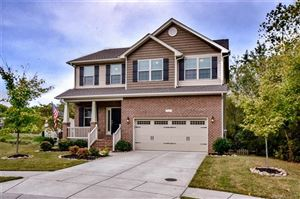 Photo of 7252 Bradberry Lane, Denver, NC 28037 (MLS # 3557955)
