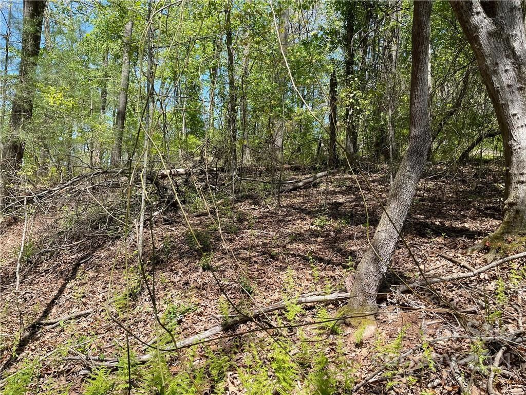 Photo of 99999 W Chippendale Drive, Mills River, NC 28759 (MLS # 3732963)