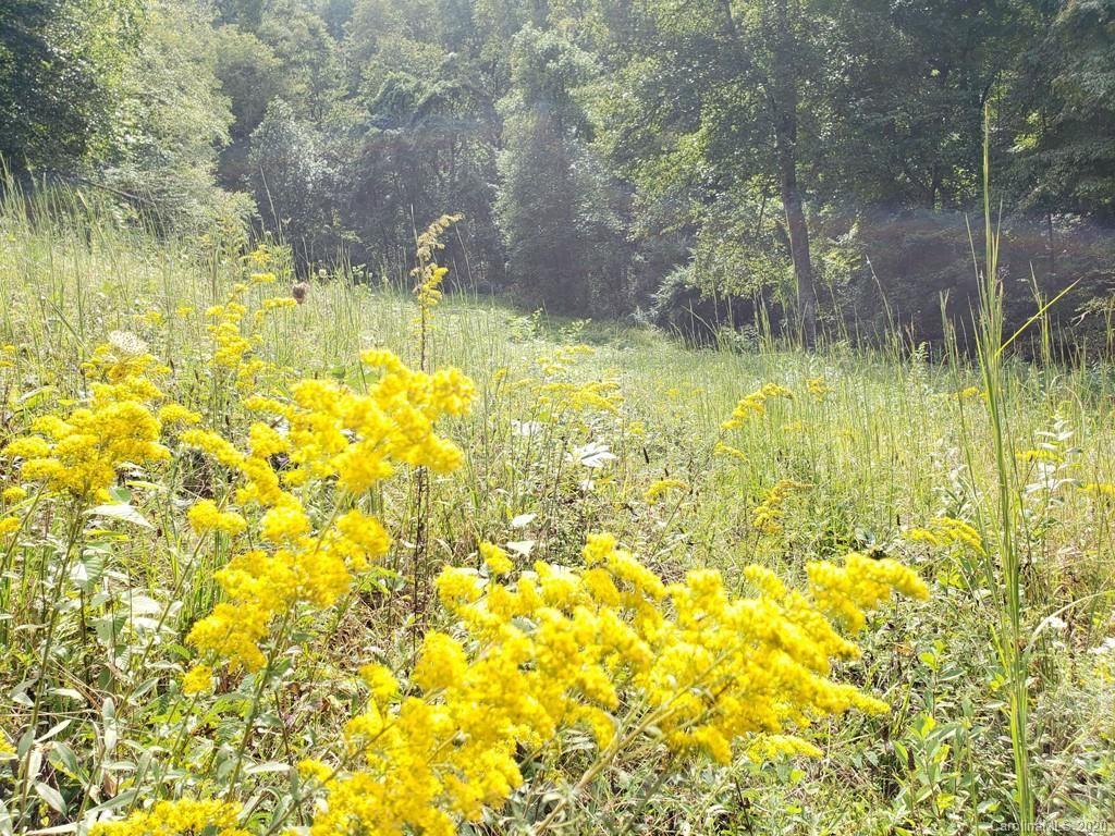 Photo of 000 Garren Creek Road, Fairview, NC 28730 (MLS # 3665964)