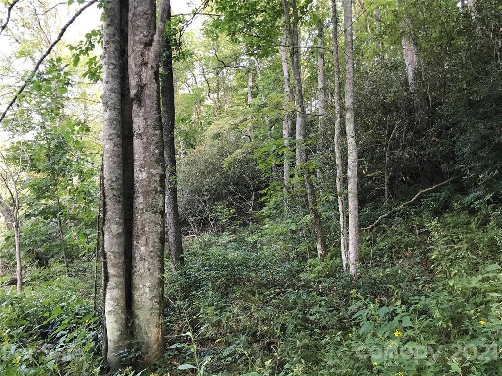 Photo of 000 Dogwood Knoll Road, Spruce Pine, NC 28777 (MLS # 3777969)