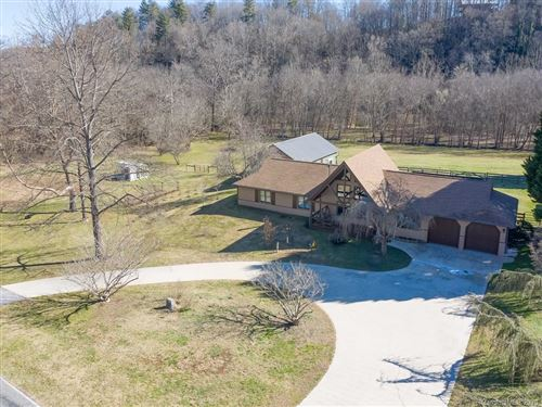Photo of 185 Brannon Road, Horse Shoe, NC 28742 (MLS # 3571973)