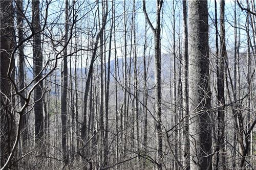 Photo of 000 NC 80 Highway, Bakersville, NC 28705 (MLS # 3693980)